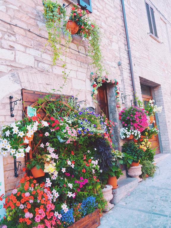 IMG 3928 從翡冷翠到斯佩洛,我走遍了那些開滿花的地方