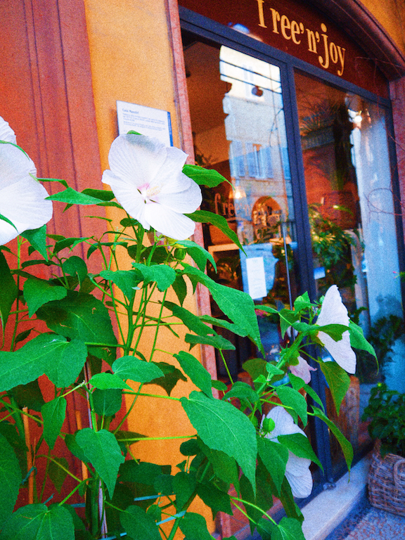 IMG 3929 從翡冷翠到斯佩洛,我走遍了那些開滿花的地方