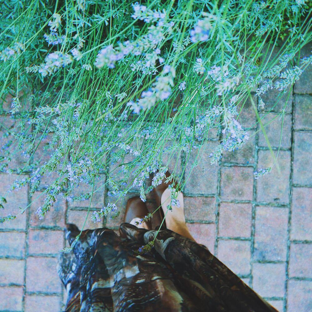37859135 657802087927339 9086240508551888896 n 從翡冷翠到斯佩洛,我走遍了那些開滿花的地方
