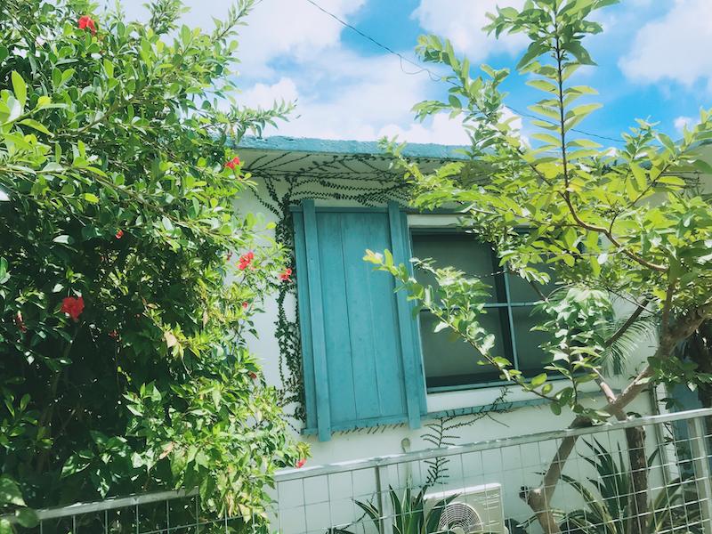 IMG 0506 夏日琉球島嶼 OKINAWA / 讓人捨不得離開的沖繩花草秘境