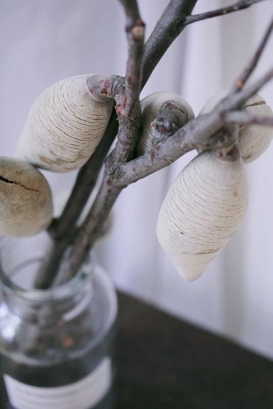 IMG 6787 來自澳洲少見的天然果實:木梨果
