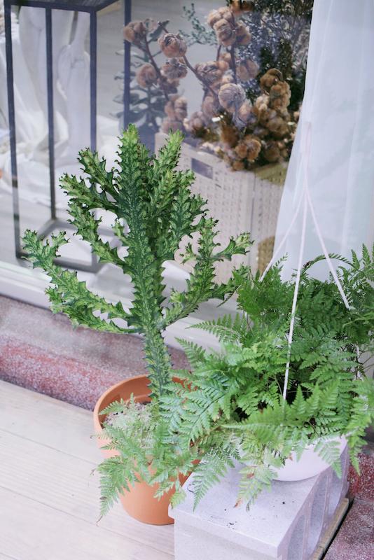 IMG 8895 不只是乾燥花店,婚禮或是生活都讓人感到幸福的花藝空間