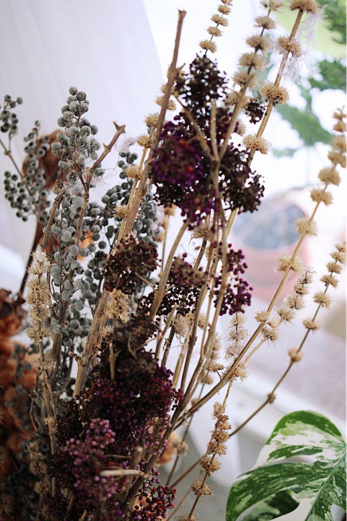 IMG 9885 683x1024 鮮花紫與乾燥酒紅,讓人無法不被吸引的濃郁色系:台灣特有種紫仁丹