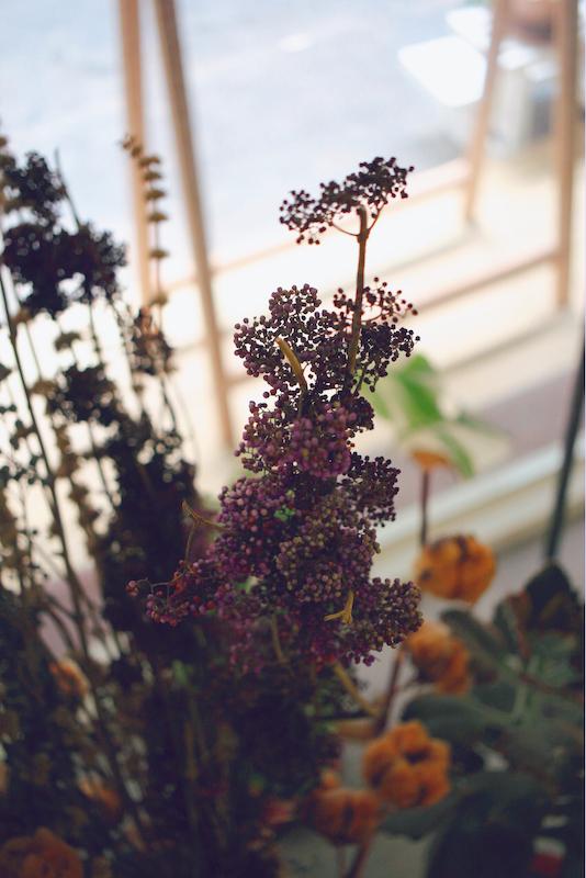 IMG 9926 鮮花紫與乾燥酒紅,讓人無法不被吸引的濃郁色系:台灣特有種紫仁丹